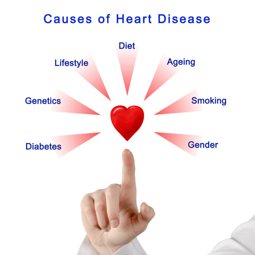 Women's Health: Heart Disease in Women Causes